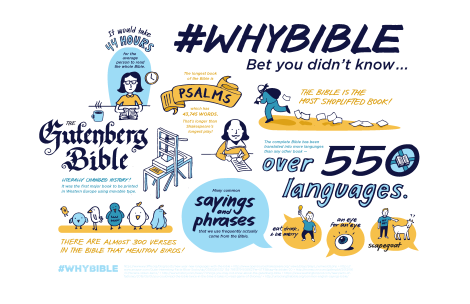 WhyBibleInfographic